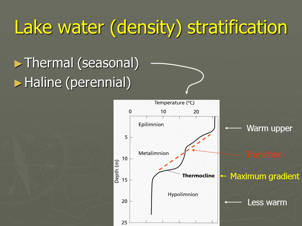 Lake water (density) stratification ► Thermal (seasonal) ► Haline (perennial) Maximum gradient Transition Less warm Warm upper