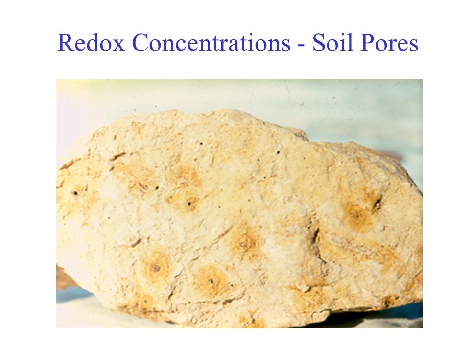Redox Concentrations - Soil Pores
