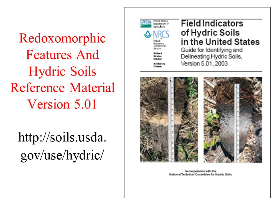 Redoxomorphic Features And Hydric Soils Reference Material Version 5.01 http://soils.usda. gov/use/hydric /