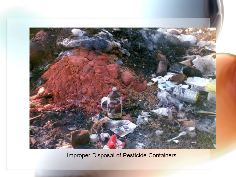 Improper Disposal of Pesticide Containers