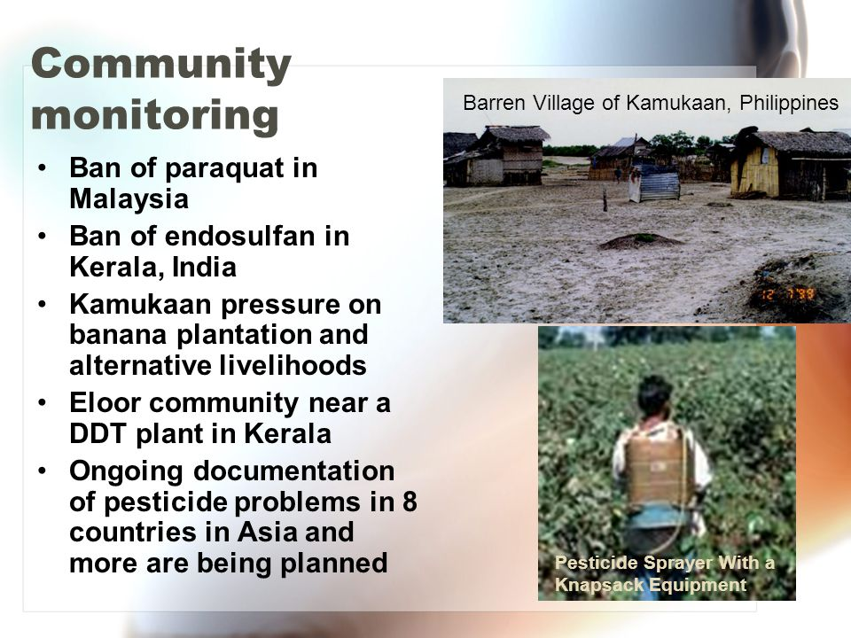 Community monitoring Ban of paraquat in Malaysia Ban of endosulfan in Kerala, India Kamukaan pressure on banana plantation and alternative livelihoods Eloor community near a DDT plant in Kerala Ongoing documentation of pesticide problems in 8 countries in Asia and more are being planned Barren Village of Kamukaan, Philippines Pesticide Sprayer With a Knapsack Equipment