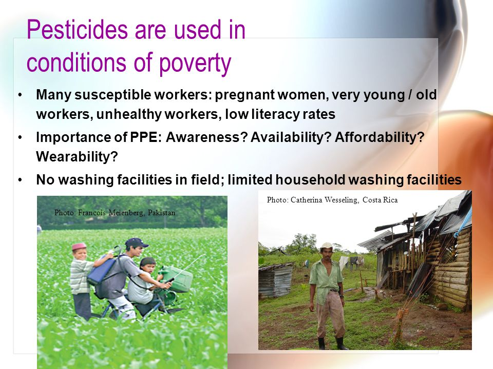 Pesticides are used in conditions of poverty Many susceptible workers: pregnant women, very young / old workers, unhealthy workers, low literacy rates