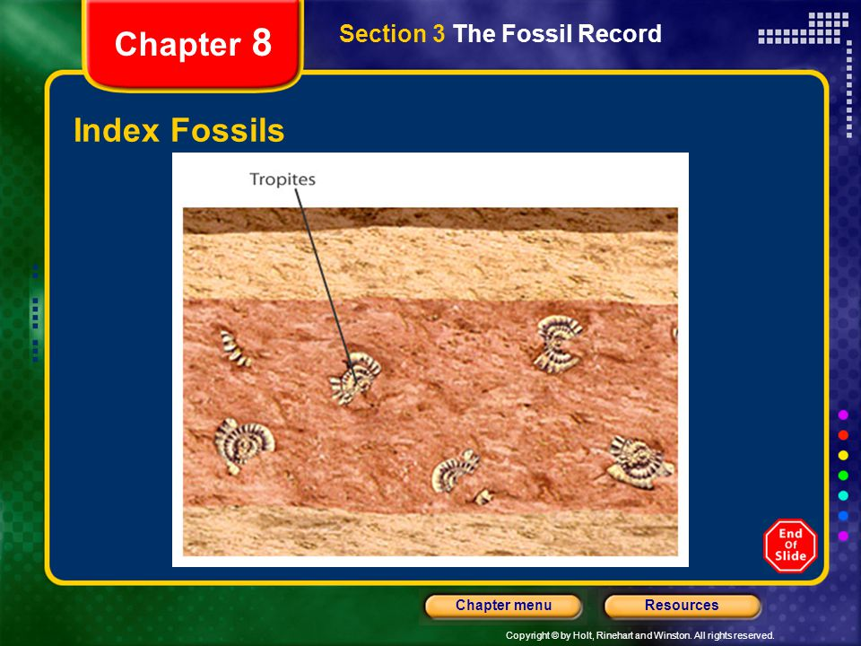 Copyright © by Holt, Rinehart and Winston. All rights reserved. ResourcesChapter menu Chapter 8 Index Fossils Section 3 The Fossil Record