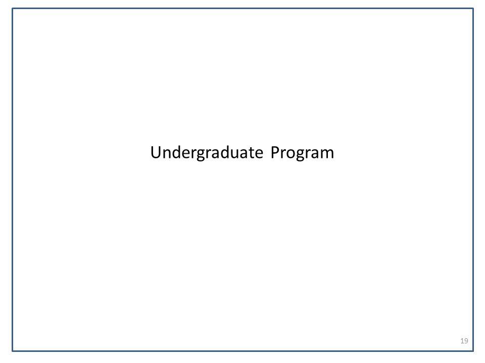 Undergraduate Program 19