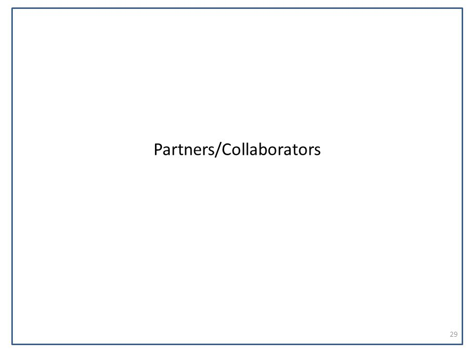 Partners/Collaborators 29