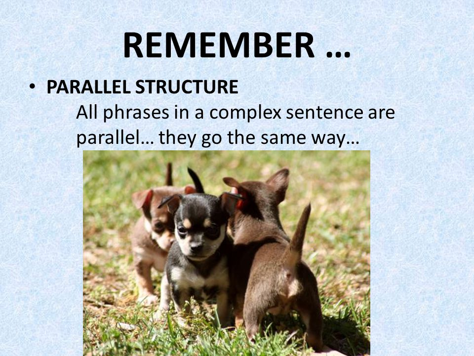 REMEMBER … PARALLEL STRUCTURE All phrases in a complex sentence are parallel… they go the same way…