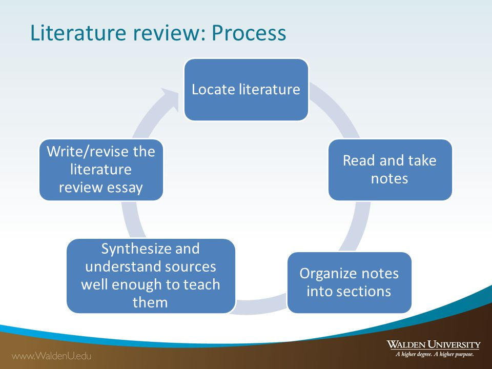 Sections of a literature review