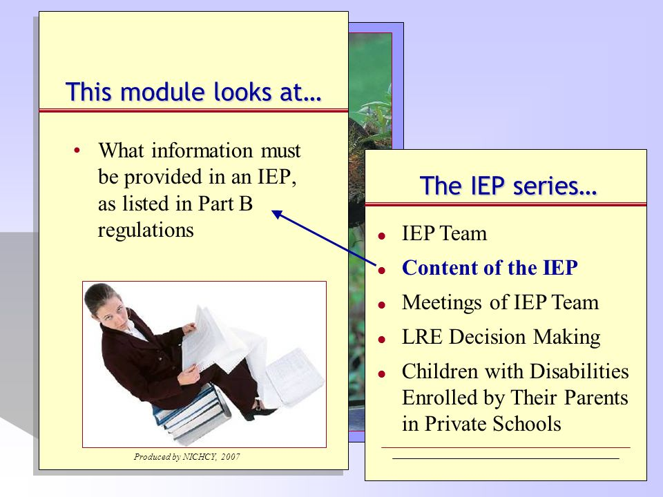 IEP Document: What's Included.Explanation of the...