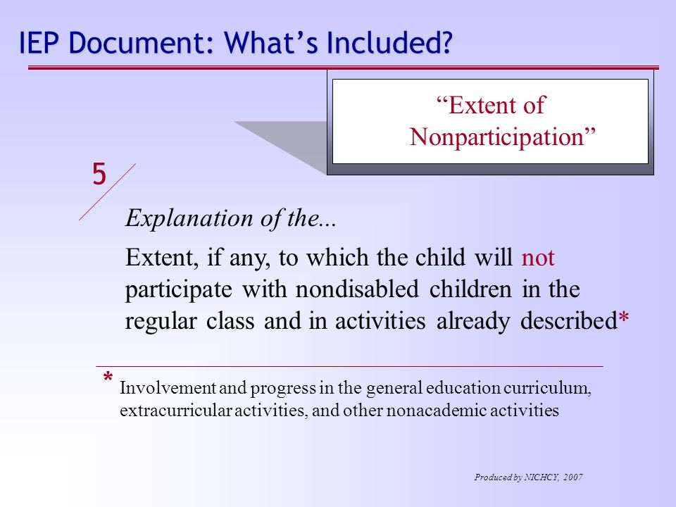 IEP Document: What's Included. Explanation of the...