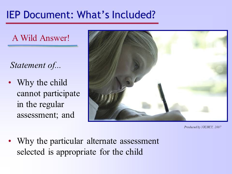 IEP Document: What's Included. Statement of... A Wild Answer.