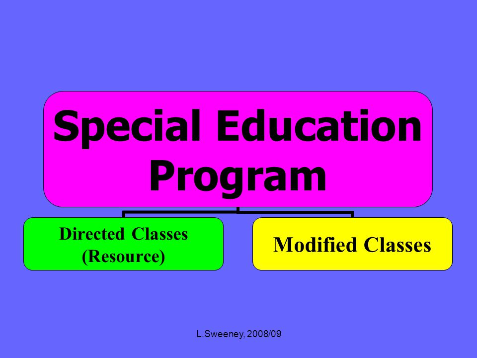 L.Sweeney, 2008/09 High School SPECIAL EDUCATION ELDMainstreamCollege Level I.B. A.P. Honors