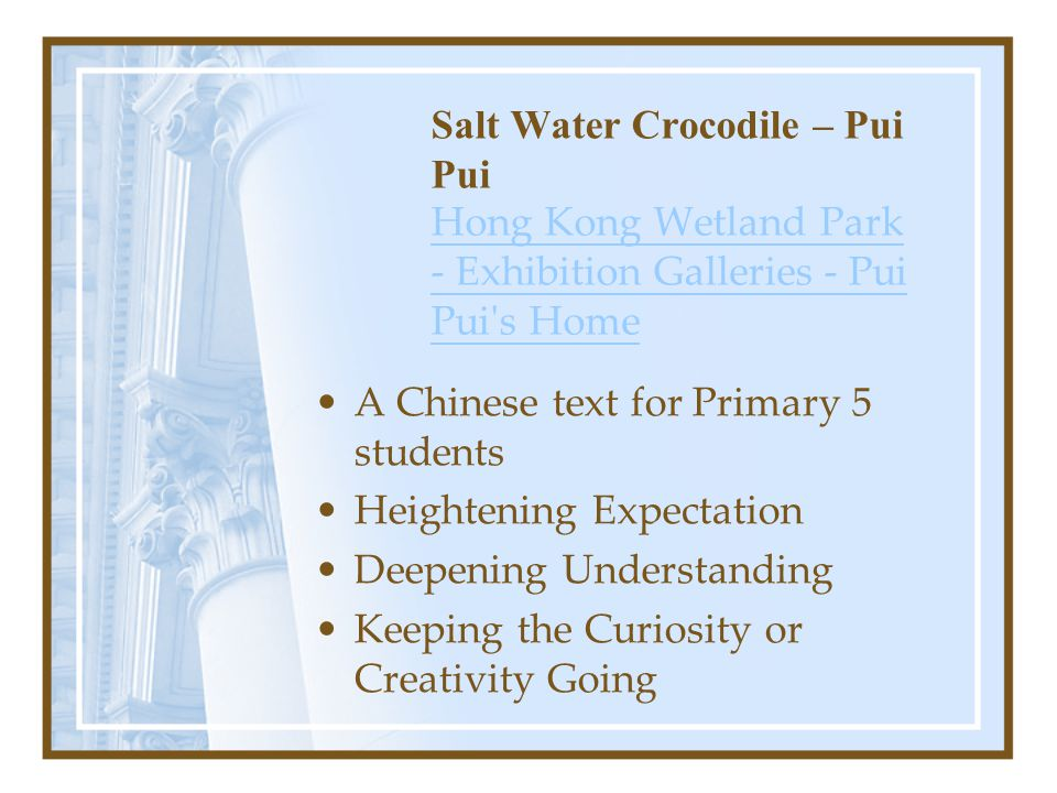 Salt Water Crocodile – Pui Pui Hong Kong Wetland Park - Exhibition Galleries - Pui Pui s Home Hong Kong Wetland Park - Exhibition Galleries - Pui Pui s Home A Chinese text for Primary 5 students Heightening Expectation Deepening Understanding Keeping the Curiosity or Creativity Going