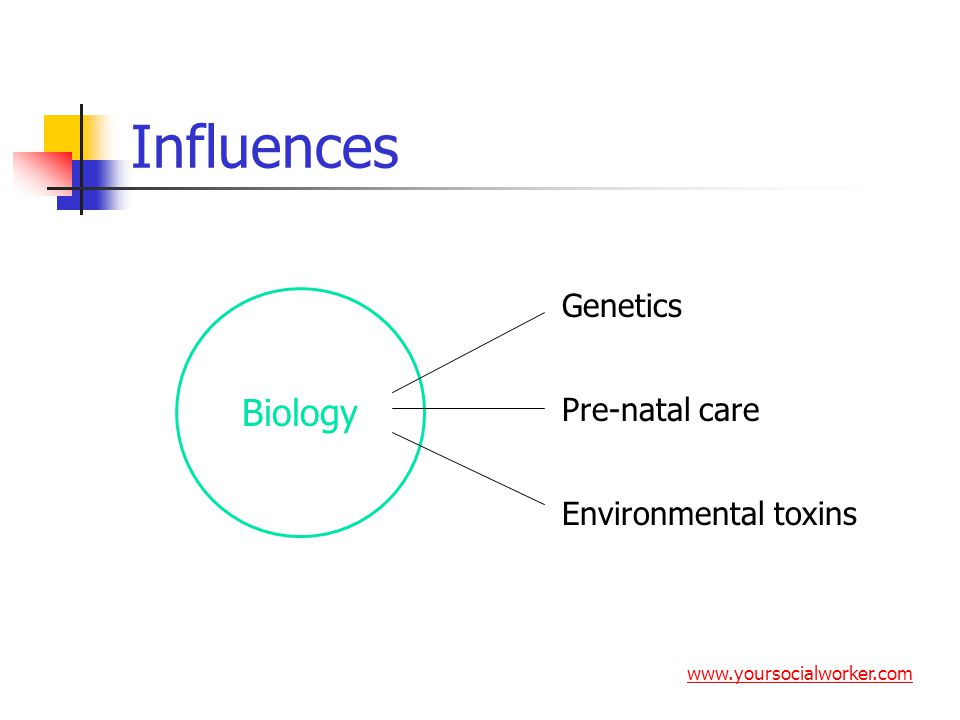 Influences Biology Genetics Pre-natal care Environmental toxins www.yoursocialworker.com