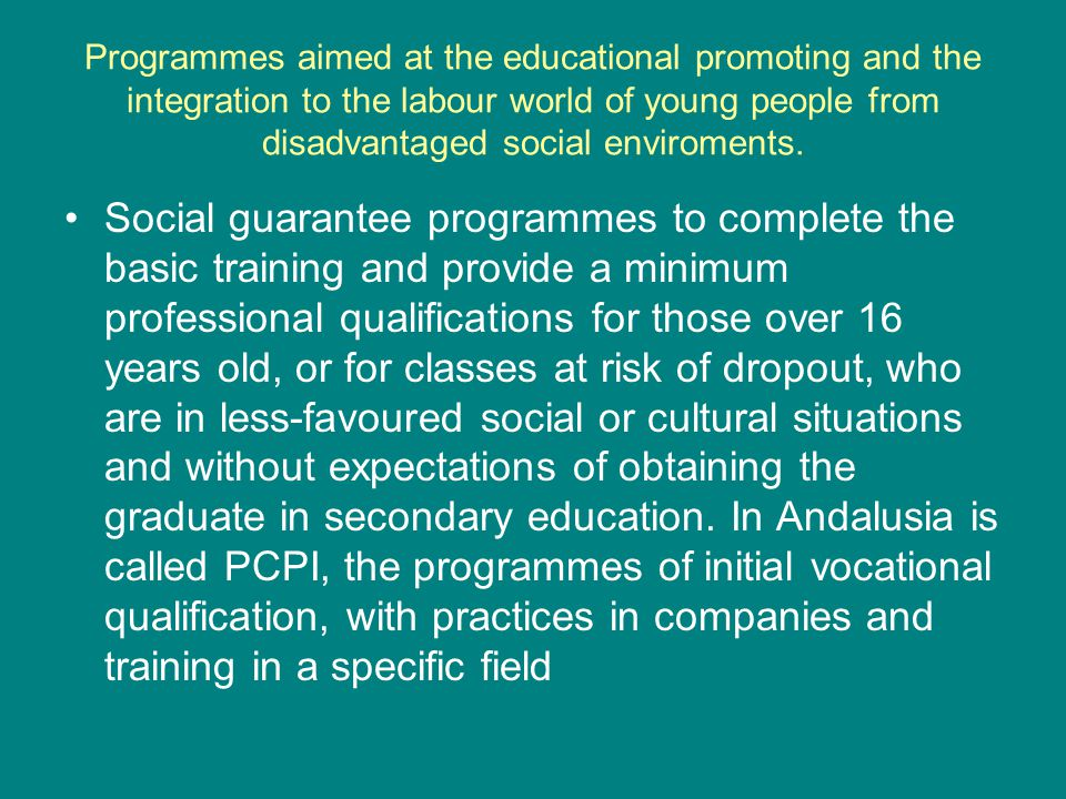 Programmes aimed at the educational promoting and the integration to the labour world of young people from disadvantaged social enviroments.