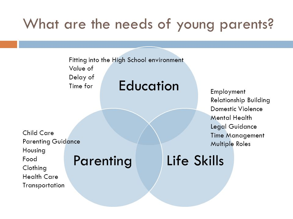 What are the needs of young parents? Education Life SkillsParenting Employment Relationship Building Domestic Violence Mental Health Legal Guidance Ti
