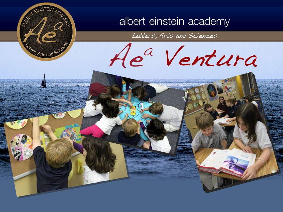 albert einstein academy Letters, Arts and Sciences PTO Albert Einstein Parent Association