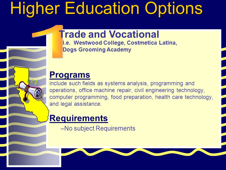 Programs include such fields as systems analysis, programming and operations, office machine repair, civil engineering technology, computer programming, food preparation, health care technology, and legal assistance.