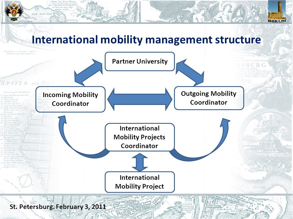 International mobility management structure St. Petersburg.