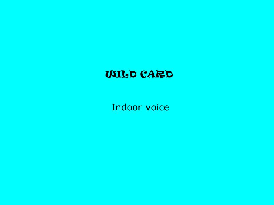 WILD CARD Indoor voice
