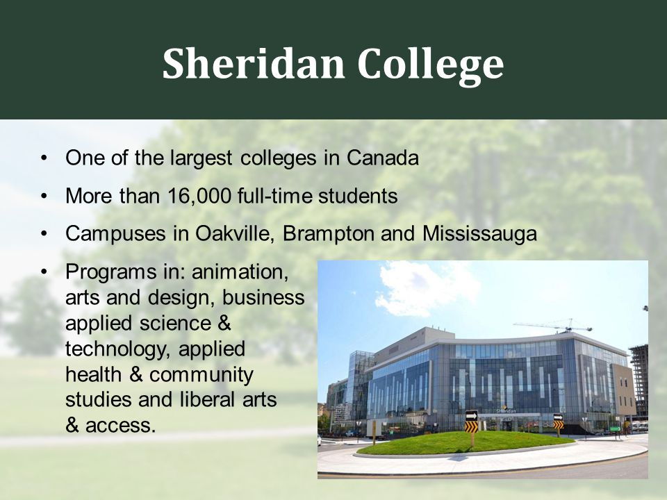 Sheridan College One of the largest colleges in Canada More than 16,000 full-time students Campuses in Oakville, Brampton and Mississauga Programs in: animation, arts and design, business applied science & technology, applied health & community studies and liberal arts & access.