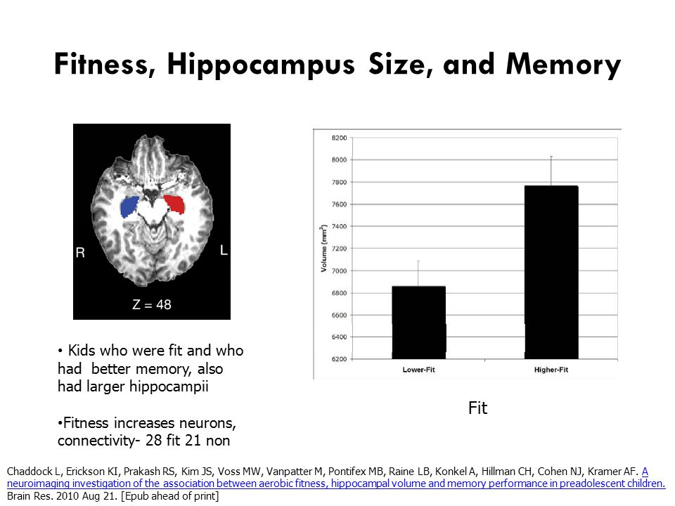 Fitness, Hippocampus Size, and Memory Fit Not Fit Kids who were fit and who had better memory, also had larger hippocampii Fitness increases neurons, connectivity- 28 fit 21 non Chaddock L, Erickson KI, Prakash RS, Kim JS, Voss MW, Vanpatter M, Pontifex MB, Raine LB, Konkel A, Hillman CH, Cohen NJ, Kramer AF.