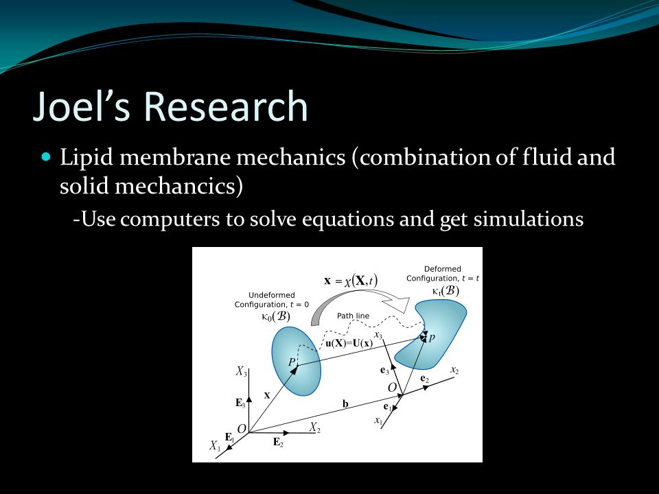 Joel's Research Lipid membrane mechanics (combination of fluid and solid mechancics) -Use computers to solve equations and get simulations