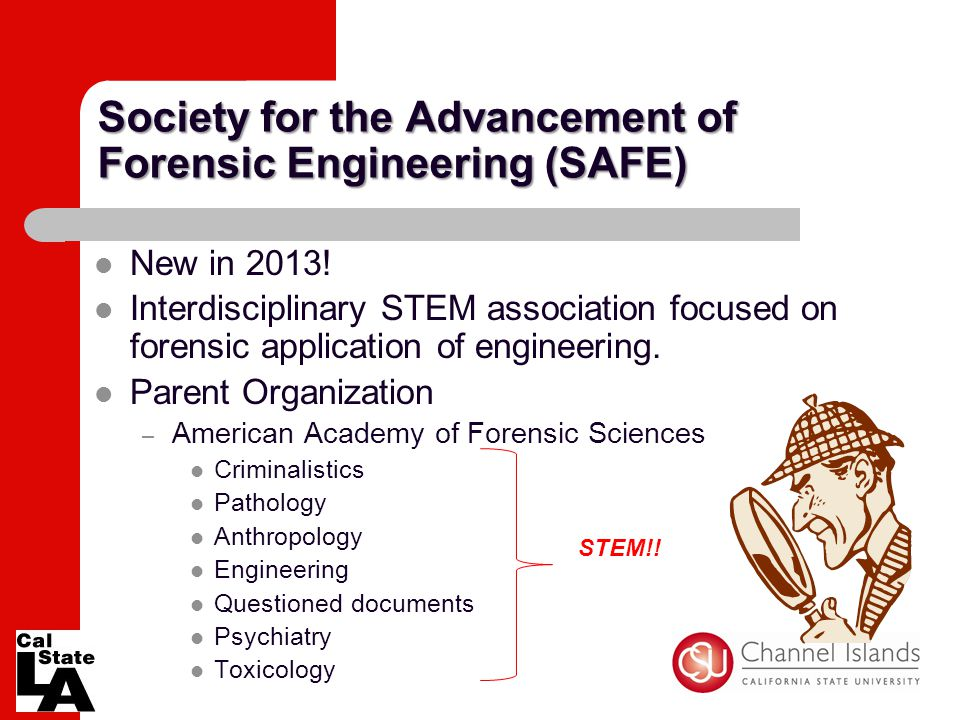 Society for the Advancement of Forensic Engineering (SAFE) New in 2013! Interdisciplinary STEM association focused on forensic application of engineer