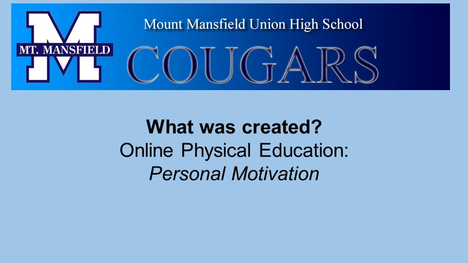 What was created Online Physical Education: Personal Motivation