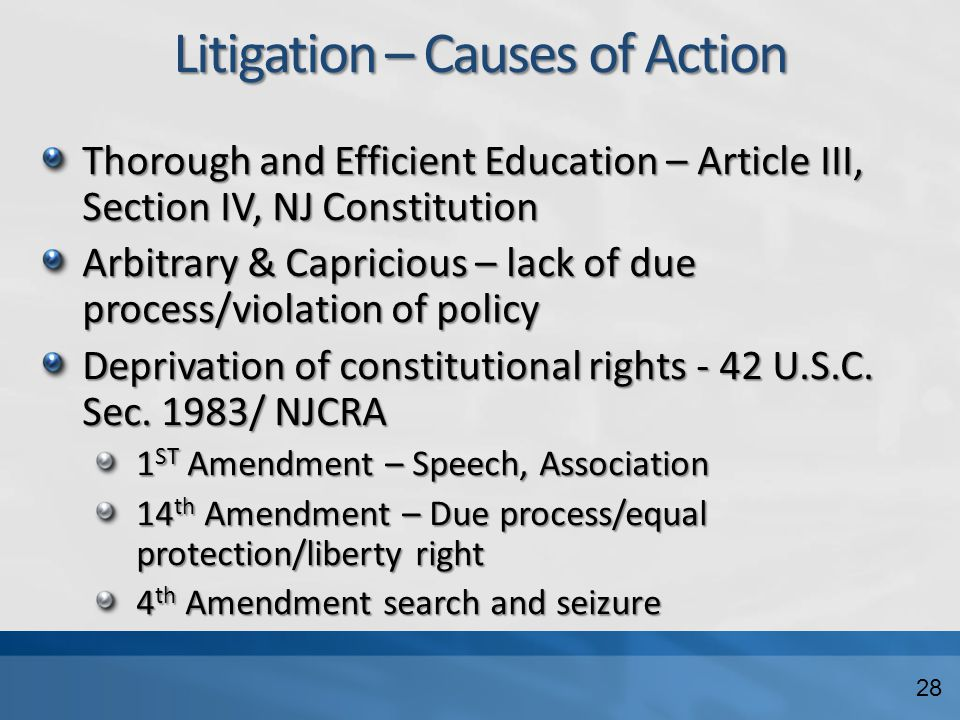 Litigation – Causes of Action Thorough and Efficient Education – Article III, Section IV, NJ Constitution Arbitrary & Capricious – lack of due process