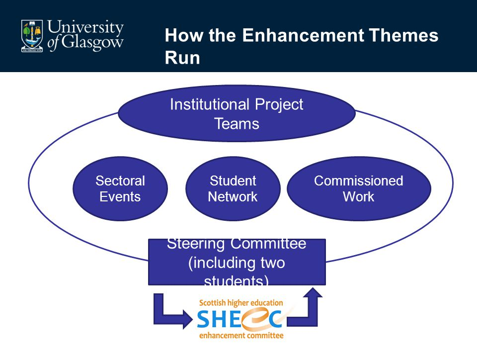 Steering Committee (including two students) Sectoral Events Commissioned Work Student Network Institutional Project Teams How the Enhancement Themes R