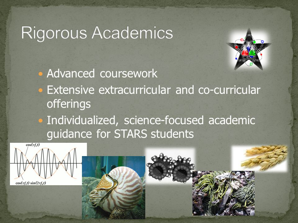 Advanced coursework Extensive extracurricular and co-curricular offerings Individualized, science-focused academic guidance for STARS students