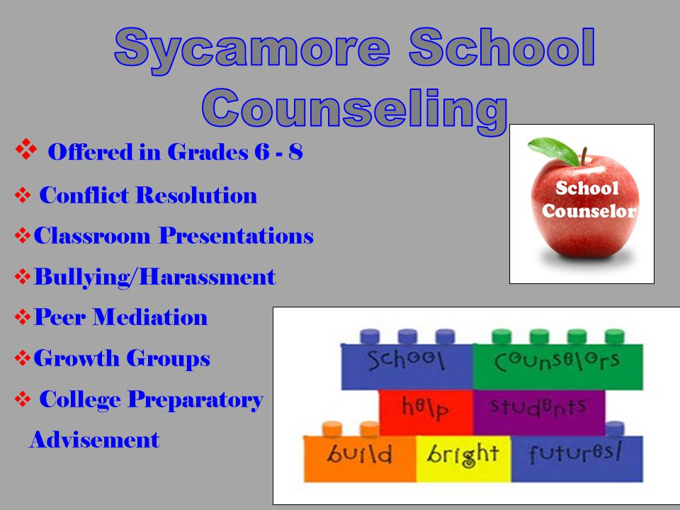  Offered in Grades 6 - 8  Conflict Resolution  Classroom Presentations  Bullying/Harassment  Peer Mediation  Growth Groups  College Preparatory Advisement