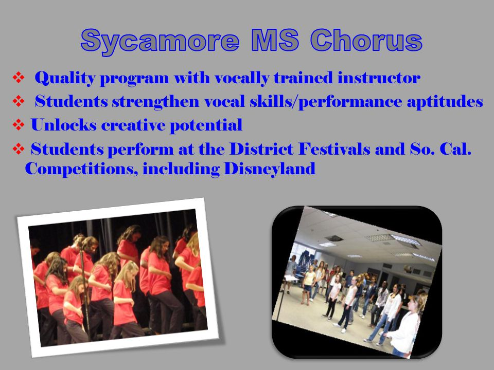  Quality program with vocally trained instructor  Students strengthen vocal skills/performance aptitudes  Unlocks creative potential  Students perform at the District Festivals and So.