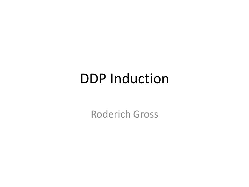 DDP Induction Roderich Gross