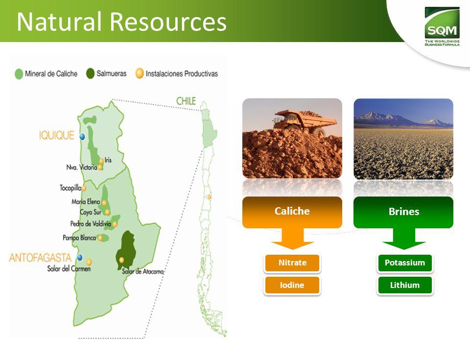 Natural Resources Caliche Brines Nitrate Iodine Potassium Lithium
