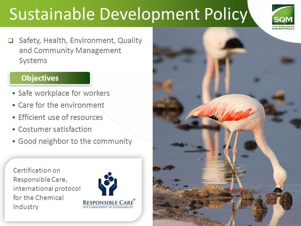 Sustainable Development Policy  Safe workplace for workers  Care for the environment  Efficient use of resources  Costumer satisfaction  Good neighbor to the community  Safety, Health, Environment, Quality and Community Management Systems Objectives Certification on Responsible Care, international protocol for the Chemical Industry