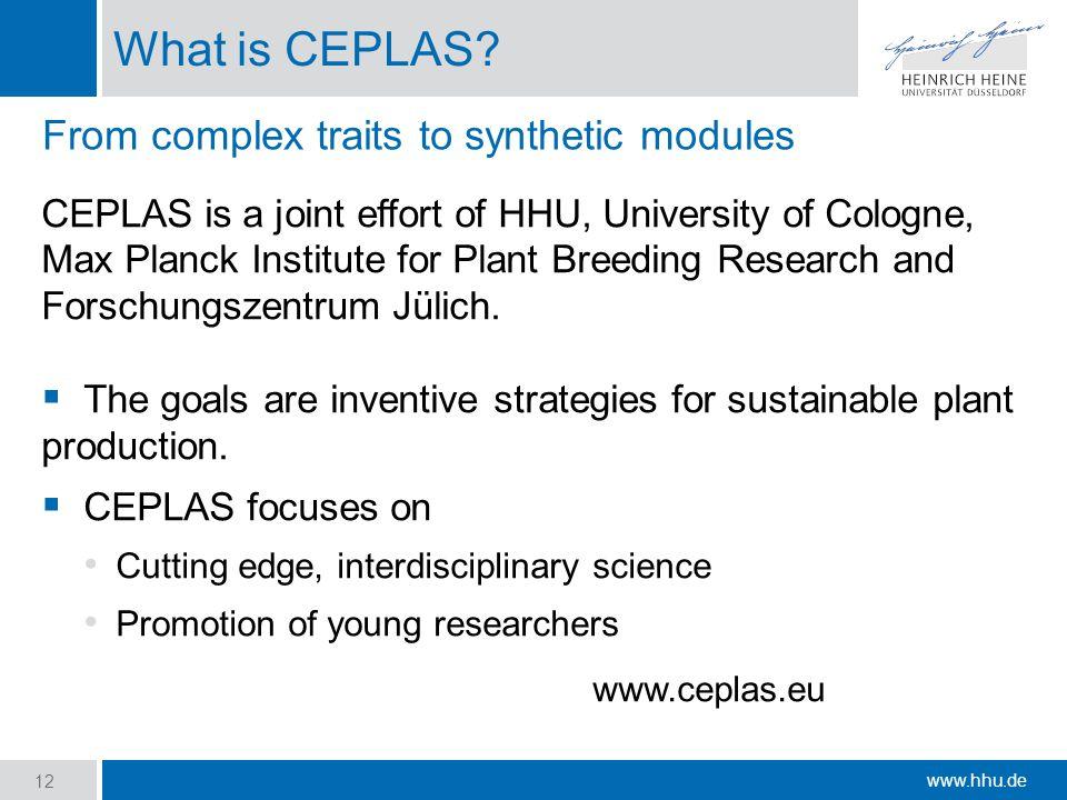 www.hhu.de What is CEPLAS.