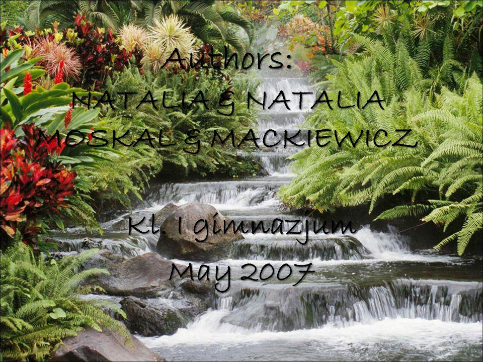 Authors: NATALIA & NATALIA MOSKAL & MACKIEWICZ Kl. I gimnazjum May 2007