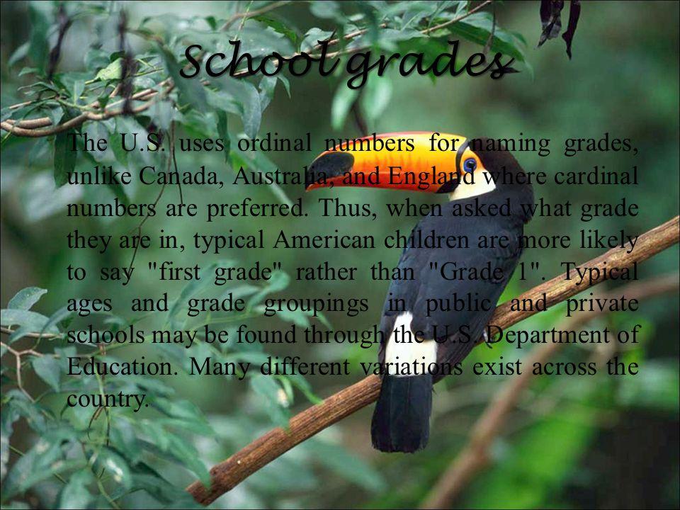 School grades The U.S.