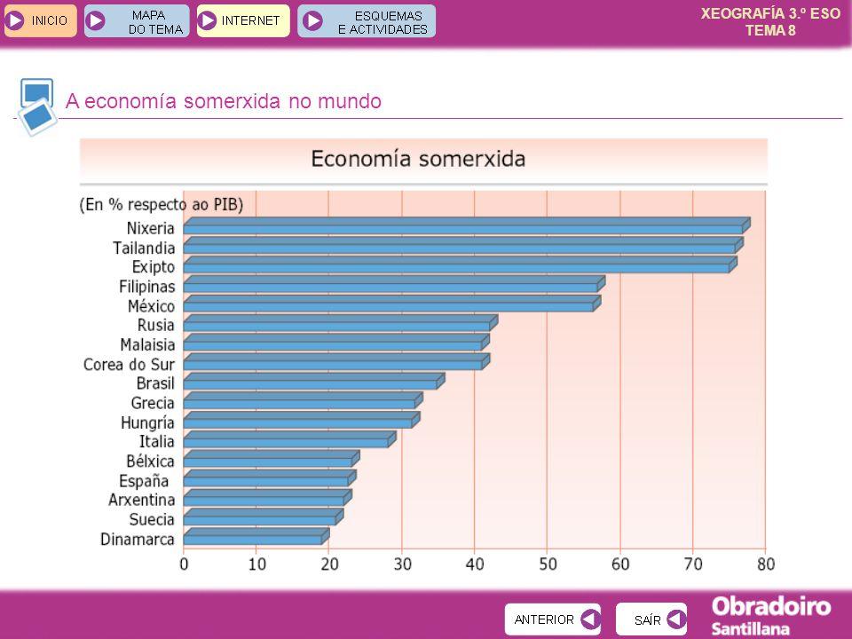 XEOGRAFÍA 3.º ESO TEMA 8 A economía somerxida no mundo