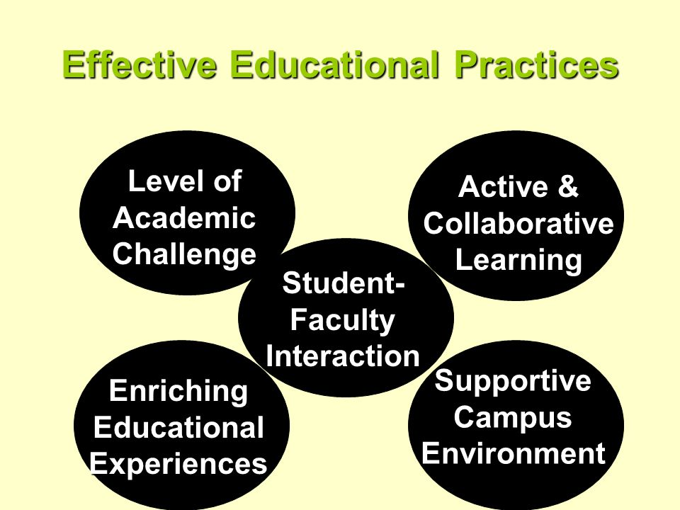 Effective Educational Practices Level of Academic Challenge Active & Collaborative Learning Enriching Educational Experiences SupportiveCampusEnvironment Student- Faculty Interaction