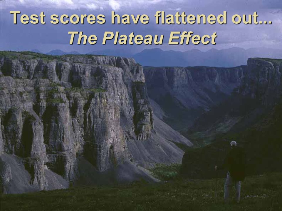 42 Test scores have flattened out... The Plateau Effect