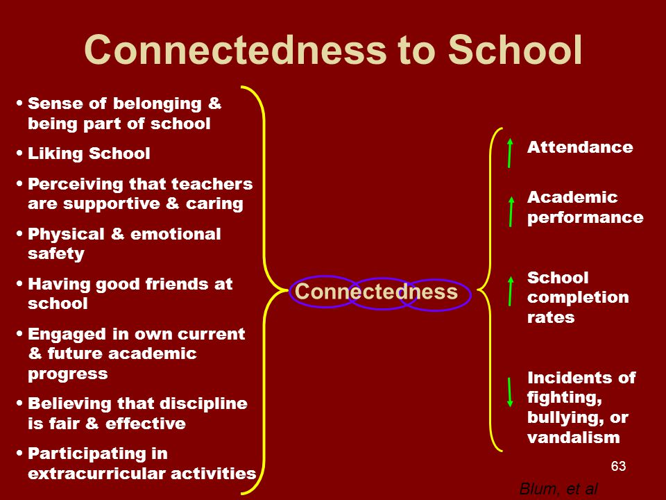 63 Connectedness to School Sense of belonging & being part of school Liking School Perceiving that teachers are supportive & caring Physical & emotional safety Having good friends at school Engaged in own current & future academic progress Believing that discipline is fair & effective Participating in extracurricular activities Connectedness Attendance Academic performance School completion rates Incidents of fighting, bullying, or vandalism Blum, et al
