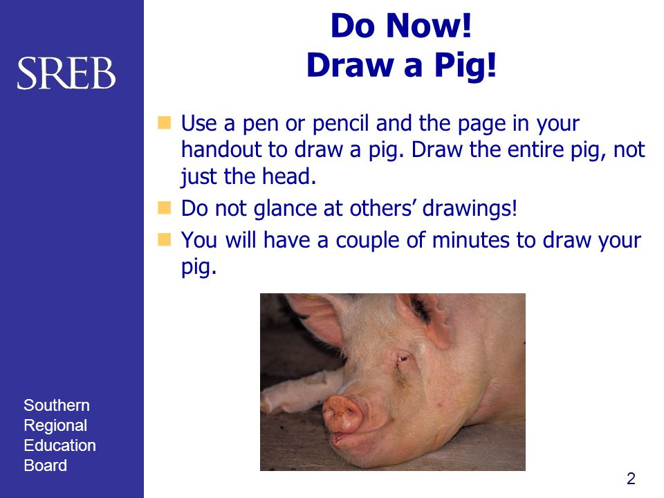 Southern Regional Education Board Do Now. Draw a Pig.