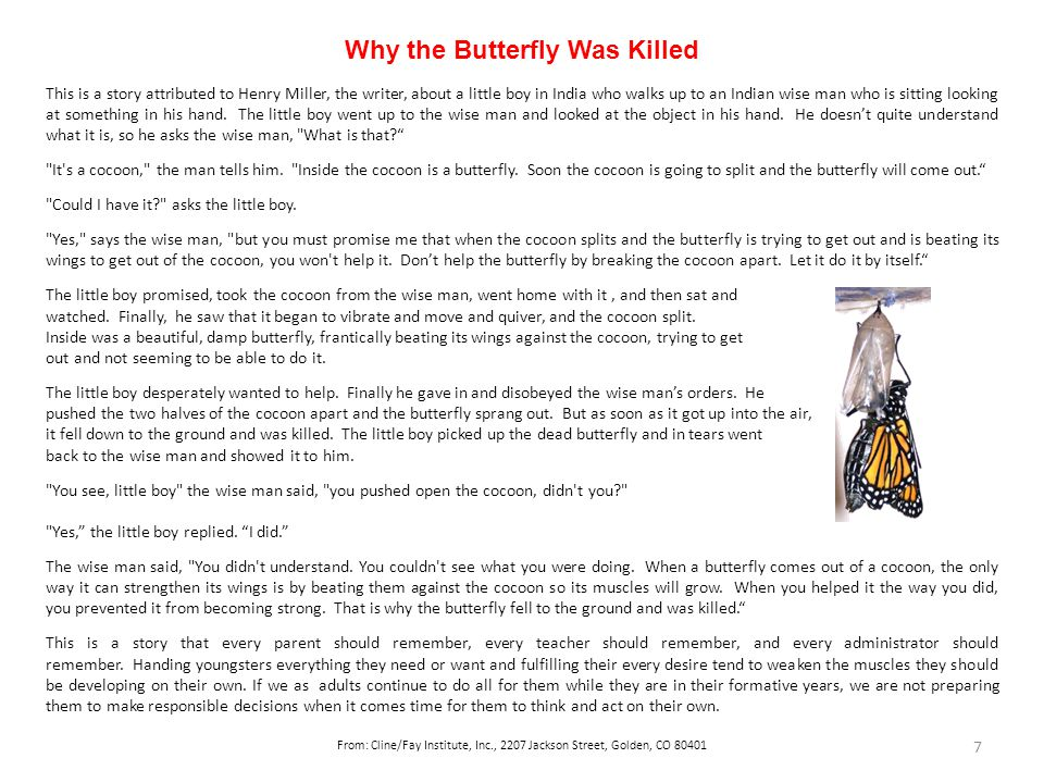 Why the Butterfly Was Killed This is a story attributed to Henry Miller, the writer, about a little boy in India who walks up to an Indian wise man who is sitting looking at something in his hand.