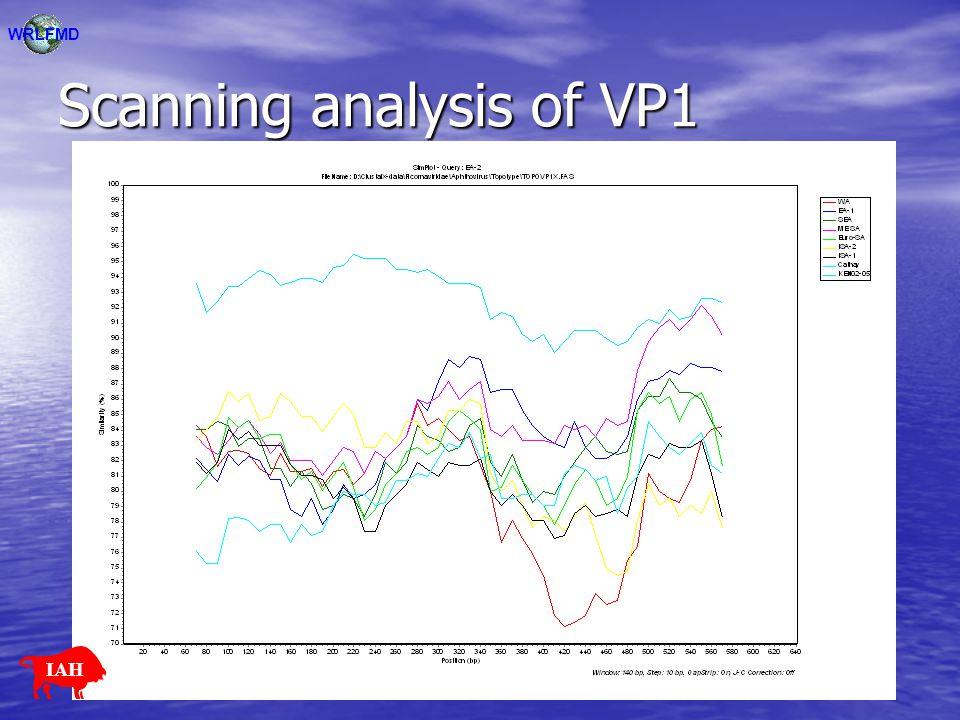 Scanning analysis of VP1 WRLFMD IAH