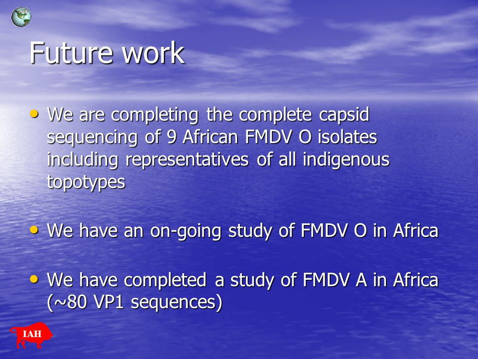 Future work We are completing the complete capsid sequencing of 9 African FMDV O isolates including representatives of all indigenous topotypes We are