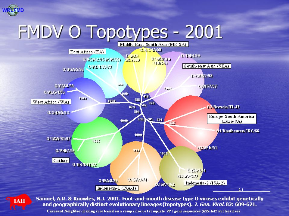 FMDV O Topotypes - 2001 WRLFMD IAH Samuel, A.R. & Knowles, N.J. 2001. Foot-and-mouth disease type O viruses exhibit genetically and geographically dis