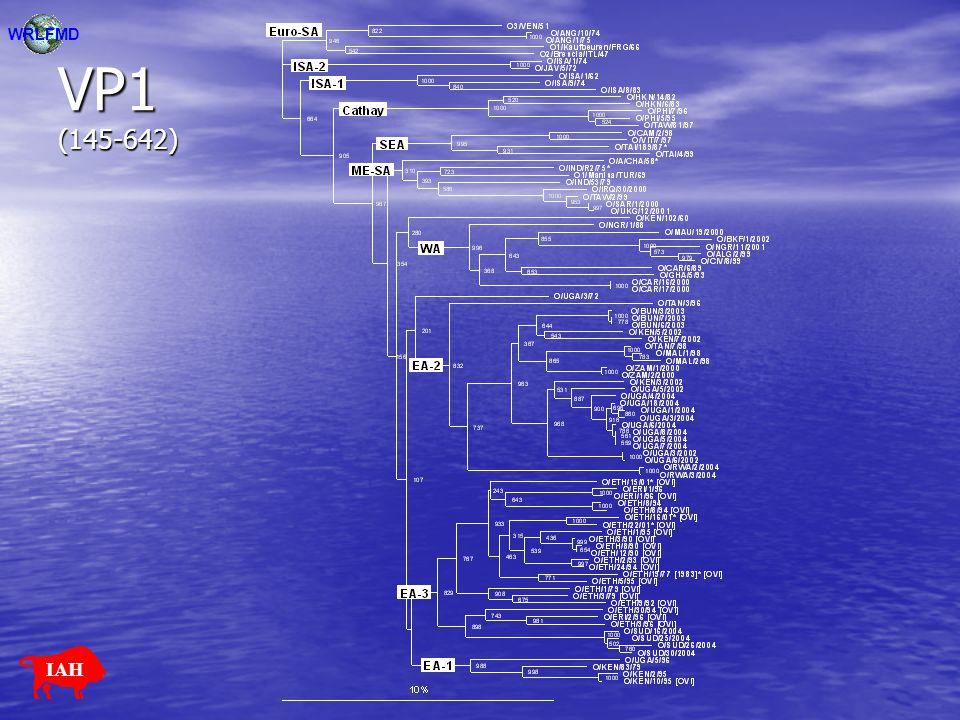 VP1 (478-642) WRLFMD IAH