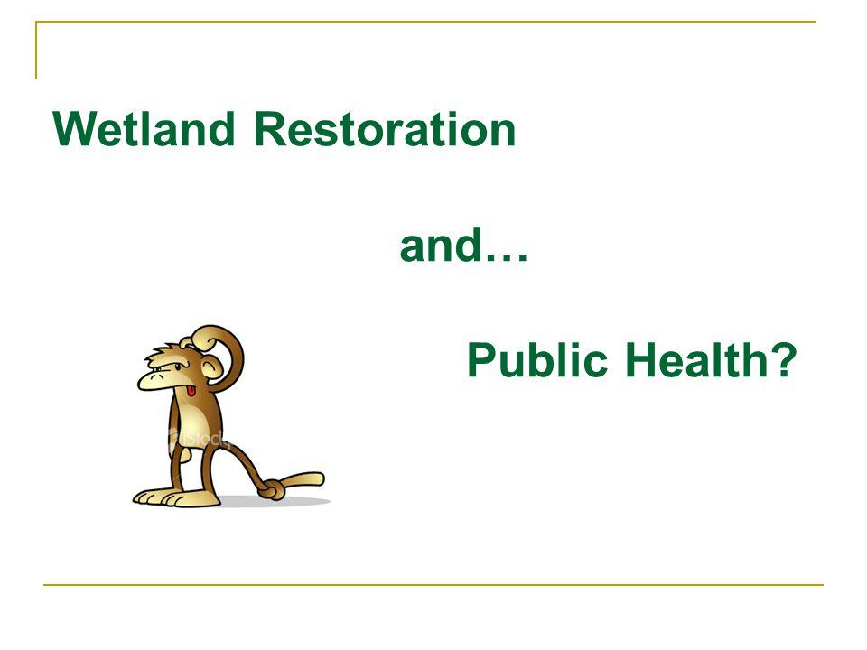 Wetland Restoration and… Public Health?